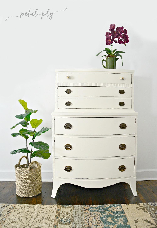 pandp-cream-painted-dresser-faux-fiddle-leaf-fig-silk-orchid