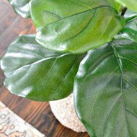 The Most Realistic Faux Fiddle Leaf Fig DIY | One Room Challenge™ Week 4