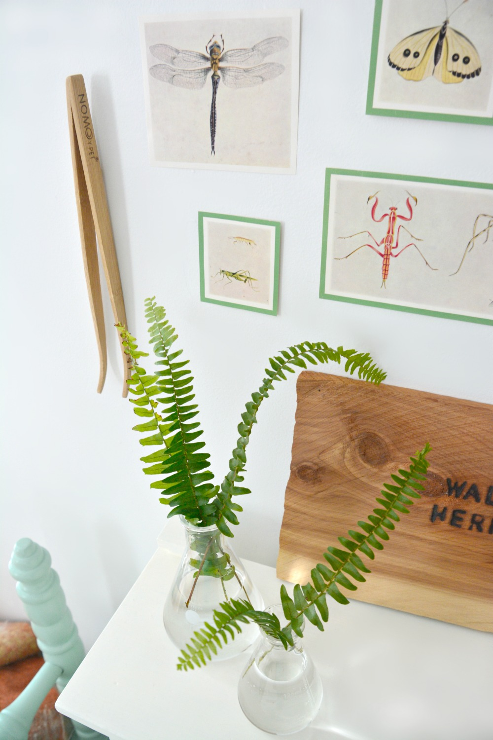 beaker-vases-with-fern